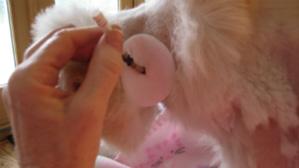 change kitty kollar step 5